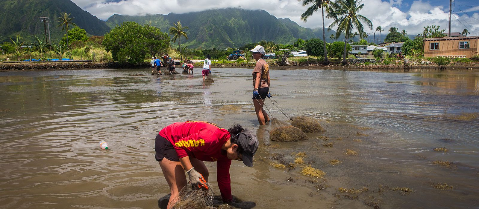 students cleaning water