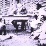 Figure 1. Fijian chiefs signing the deed of cession on 10 Oct 1874 with David Wilkinson as interpreter. It was a large meeting of chiefs in 1875 that caused mass mortality within the leadership as well as the rapid spread of measles to all parts of Fiji.