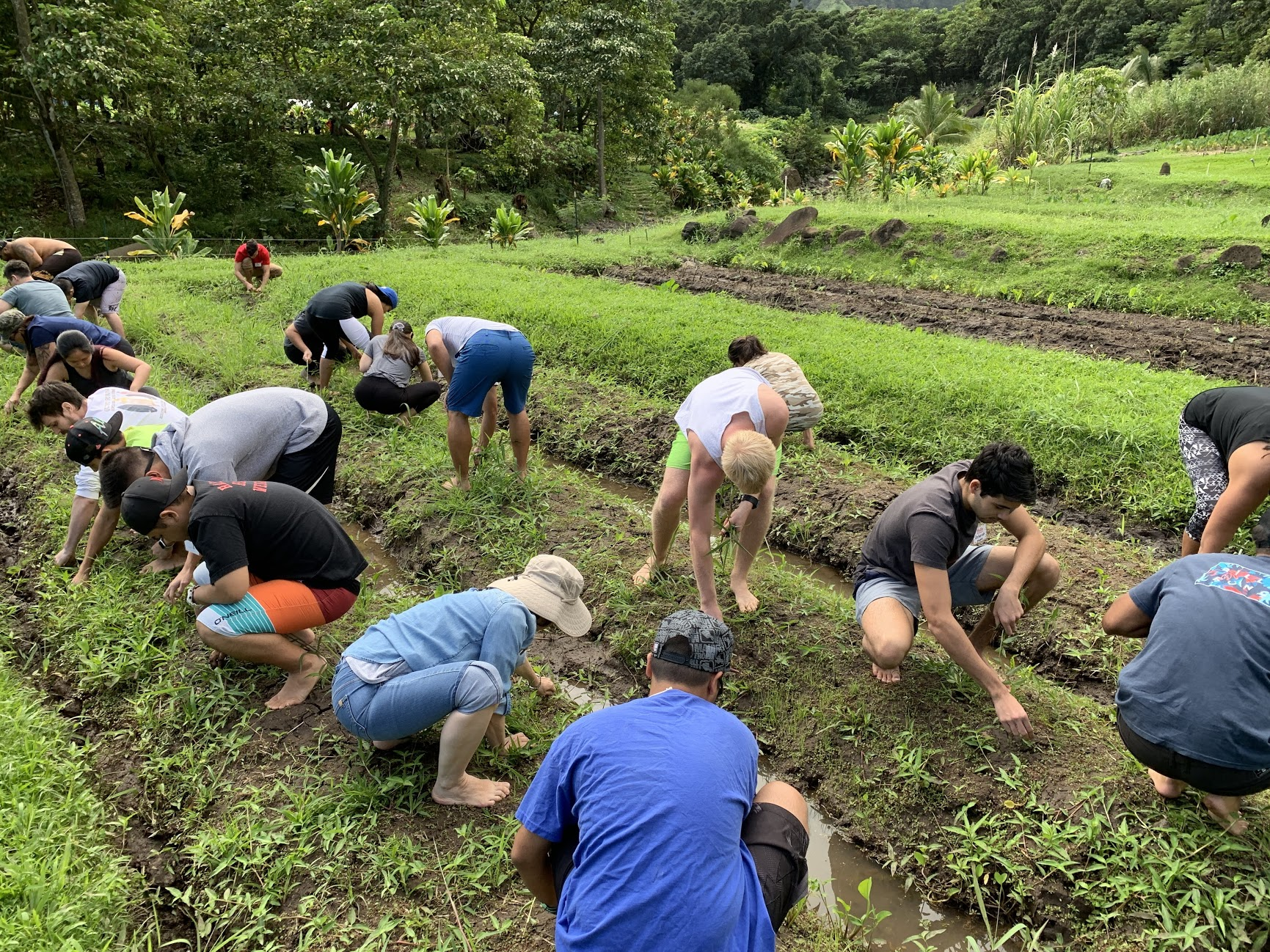 PBCTE Cohort 2 students working together during new student orientation at Papahana Kuaola, Haʻikū, Oʻahu