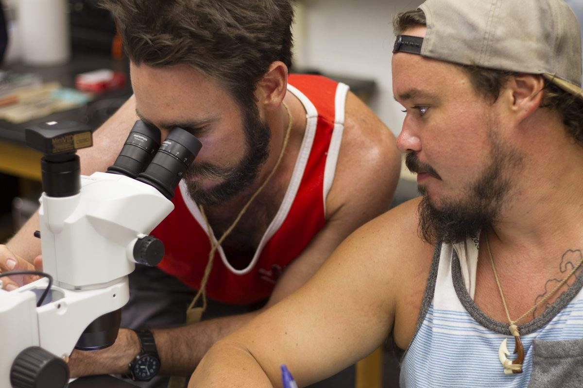 men looking at microscope