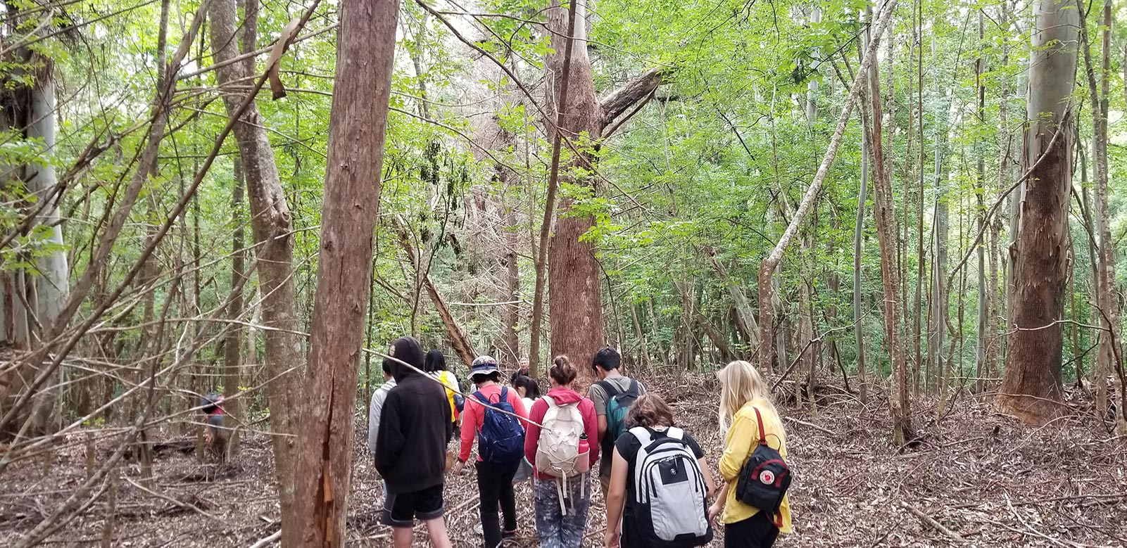 students and teachers hiking