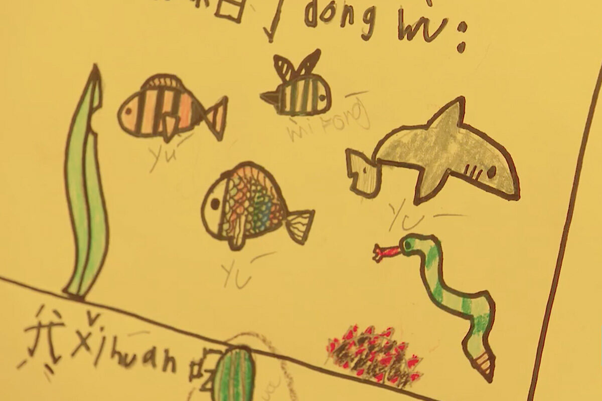 child's drawing of sea creatures